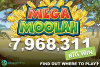 A player won jackpot €7,968,311.26 playing the slot machine Mega Moolah